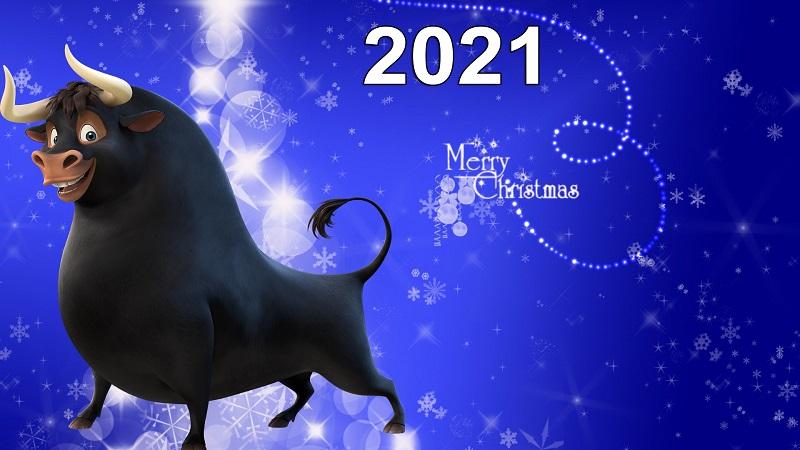 Готовимся к празднику: как и в чем встречать Новый год 2021